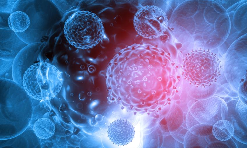 Stärkung des Immunsystems als Schutz vor Viren und Bakterien - Dagmara Zasada, Dipl. Ernährungsberaterin.