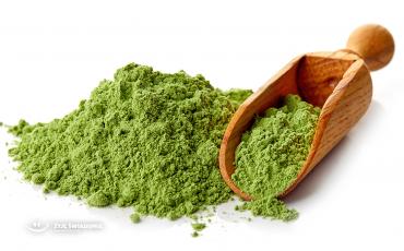 Chlorella – alga, która potrafi niemal wszystko.